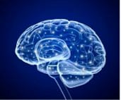 brain-human