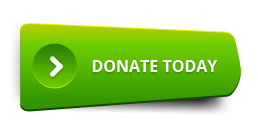 green donate clear buttons